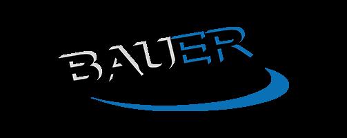 Bauer Maler und Gipser Anstalt